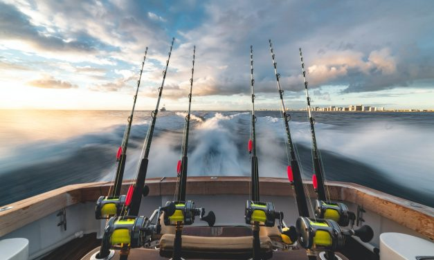 Thinking of Trying Fishing? Here are 6 Important Things To Know