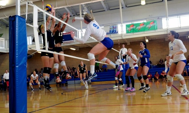 Why Choosing the Right Volleyball Shoes is Crucial to Your Performance
