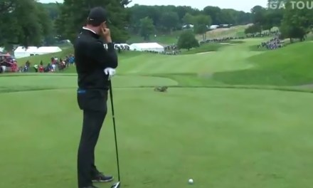 Rory McIlroy Has Tee Shot Interrupted by a Disrespectful Squirrel