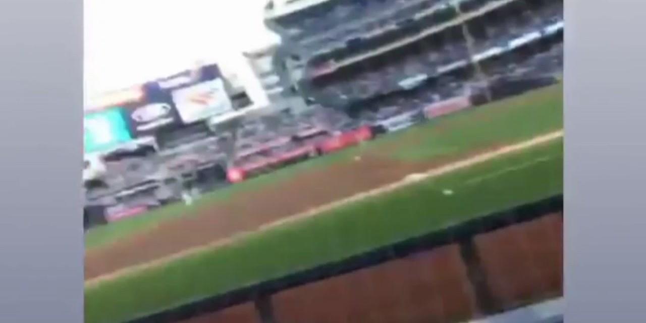 Chase Carter at Yankees game
