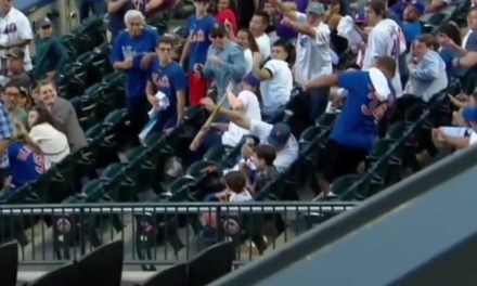 Mets Fan Saves Kids from Flying Broken Bat, Doesn't Spill a Drop of His Beer