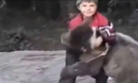 Footage of Khabib as a Child Wrestling a Bear Surfaces