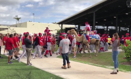 Dave Martinez Brings Camels to Spring Training for Hump Day