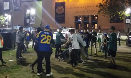 Wild Fight Broke Out after the Eagles and Rams Game