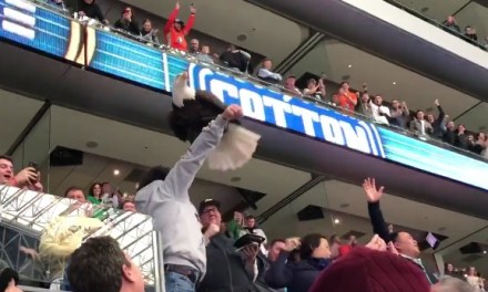 Bald Eagle Swoops onto Fans at the Cotton Bowl