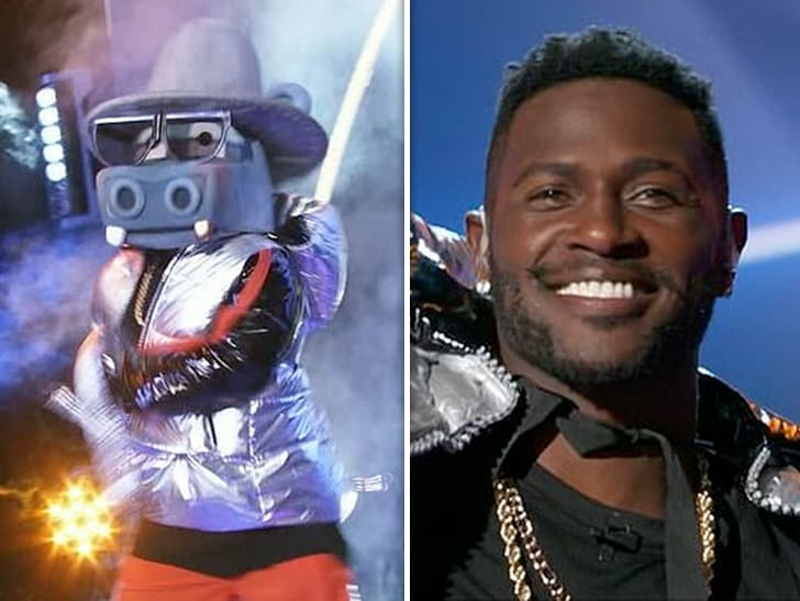 Antonio Brown Was the Hippo on Fox's Masked Singer