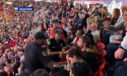 Bulls Fan Tries to Resist Miami Police and Tumbles Down Rows of Seats