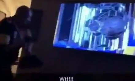 Steelers Fan Destroyed His TV with a Broomstick after the Patriots Won the Super Bowl