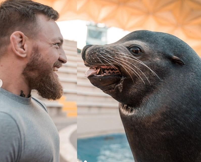 Conor McGregor's Wife Breastfeeds Their Newborn Daughter as They Spend a Day At SeaWorld