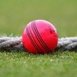 Cricket: Australia, New Zealand set for day-night test match