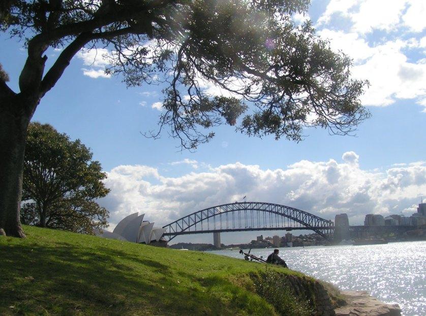 Harbour-Bridge-Mrs-Macquarie's-Chair-Sydney