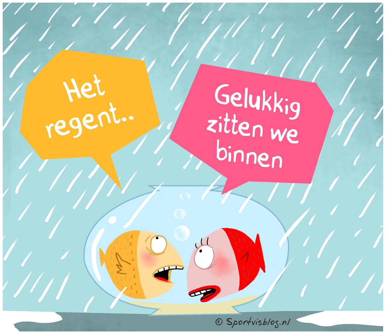 Afbeeldingsresultaat voor regen grappig
