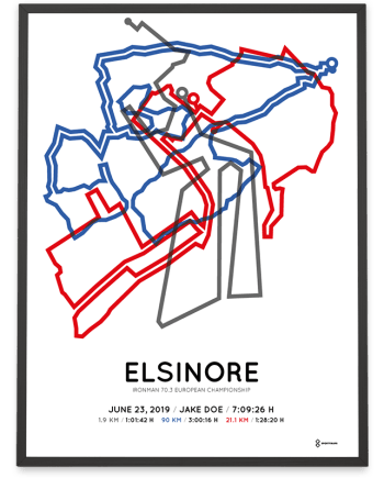 2019 Ironman 70.3 Elsinore course print