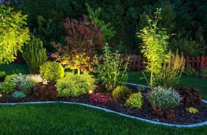 Install Low-Voltage Outdoor Lighting for Fall