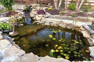 Water Features You Could Add to Your Yard This Summer