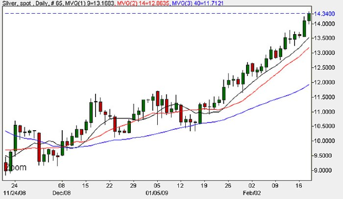 Spot Silver - Daily Candle Chart 19th February 2009
