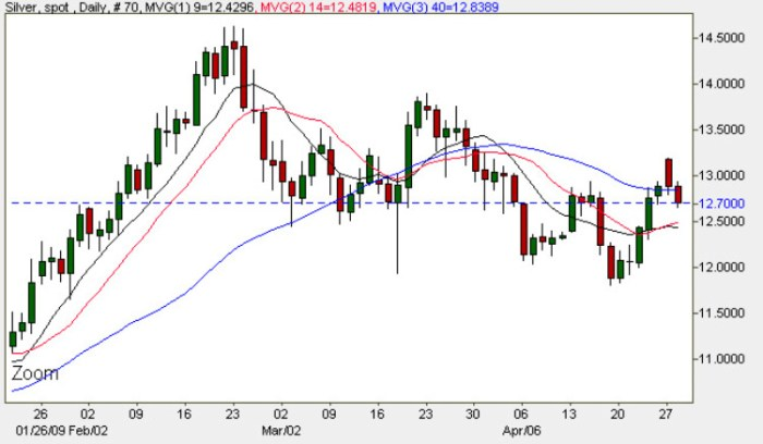 Spot Silver Prices - Daily Silver Chart 28th April 2009