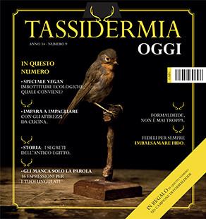 cover-tassidermia-10