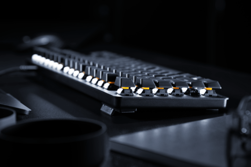 BlackWidow Lite (2018) Photo (4) Side View