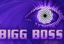 What are the Bigg Boss contestants up to now?