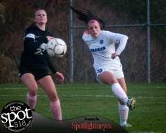 The Bethlehem girls soccer team gets by Shaker in three OT periods