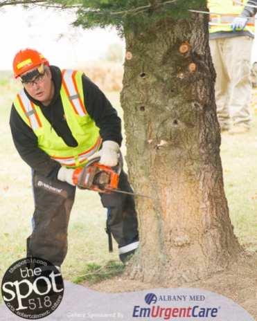 tree-4140
