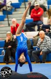 gymnastics-4487