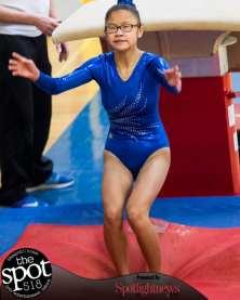 gymnastics-4928
