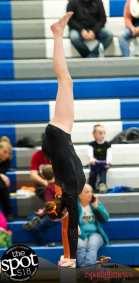 gymnastics-5099