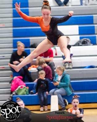gymnastics-5230