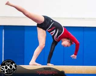 gymnastics-5613