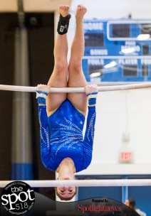 gymnastics-5653