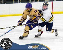 col hockey-9015