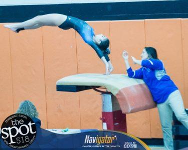 gymnastics-7347