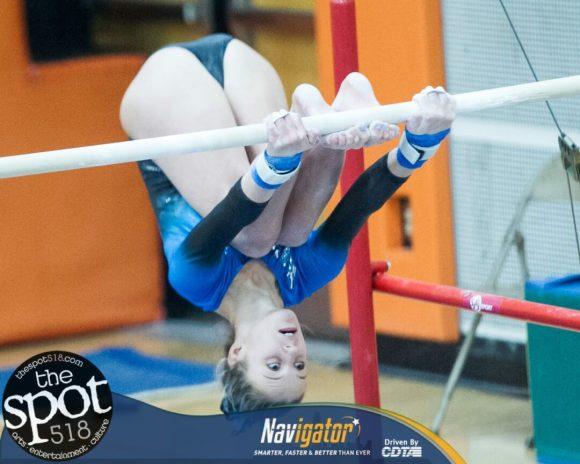 gymnastics-8254