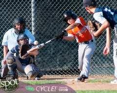 tuesday baseball-1566