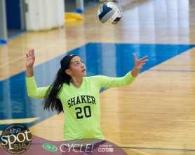 shaker v'ball-2538