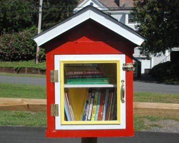 Mini Library-20