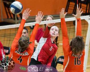 beth-guilderland volleyball-7339