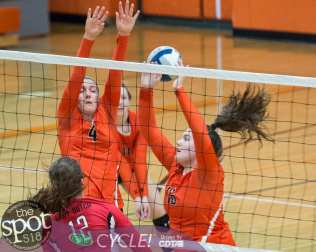 beth-guilderland volleyball-7489