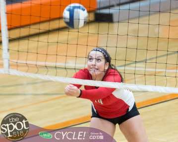 beth-guilderland volleyball-7866