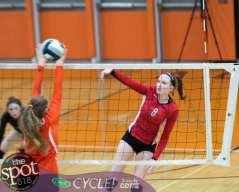 beth-guilderland volleyball-7993