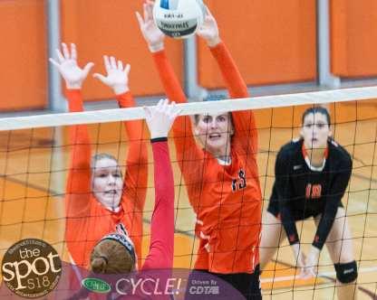 beth-guilderland volleyball-8120