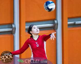 beth-guilderland volleyball-8787