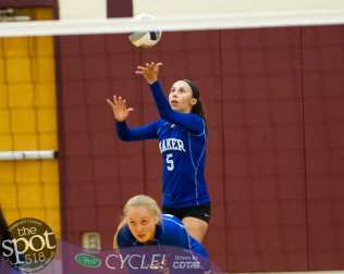 colonie-shaker v'ball-3786