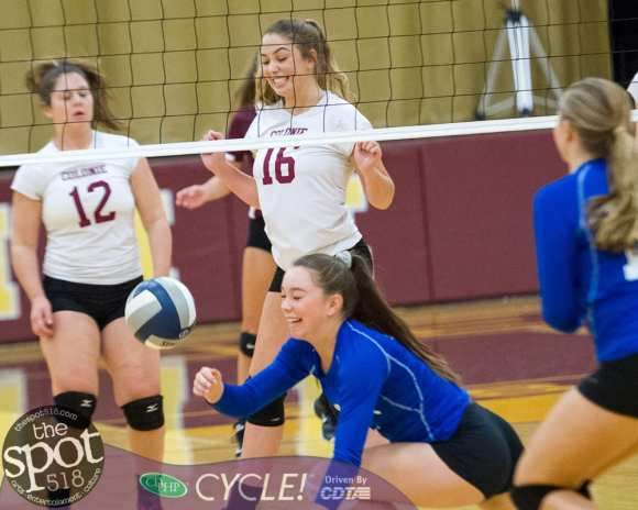 colonie-shaker v'ball-4015