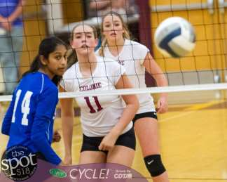 colonie-shaker v'ball-4374