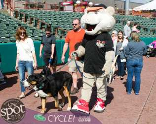 paws in the park-0704