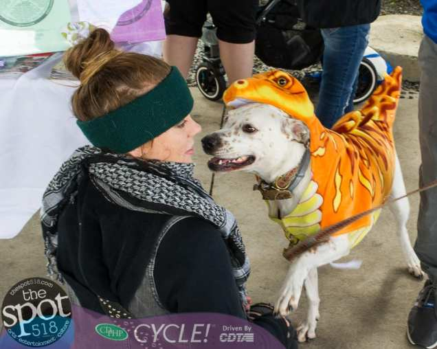 paws in the park-0788