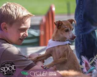paws in the park-9656